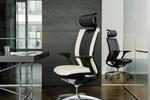 Modell Titan® mit Dondola®-Sitzgelenk verbindet edles Design mit modernster Technik.